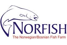 NORFISH - Blagaj