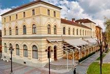 Hotel Grand Posavina