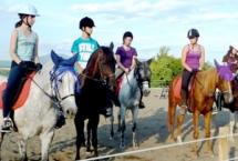 Konjički klub Pegasus