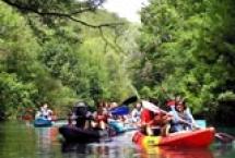 Rafting na Krivaji i Trebižat-u